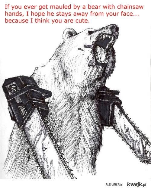 Bo niedźwiedź