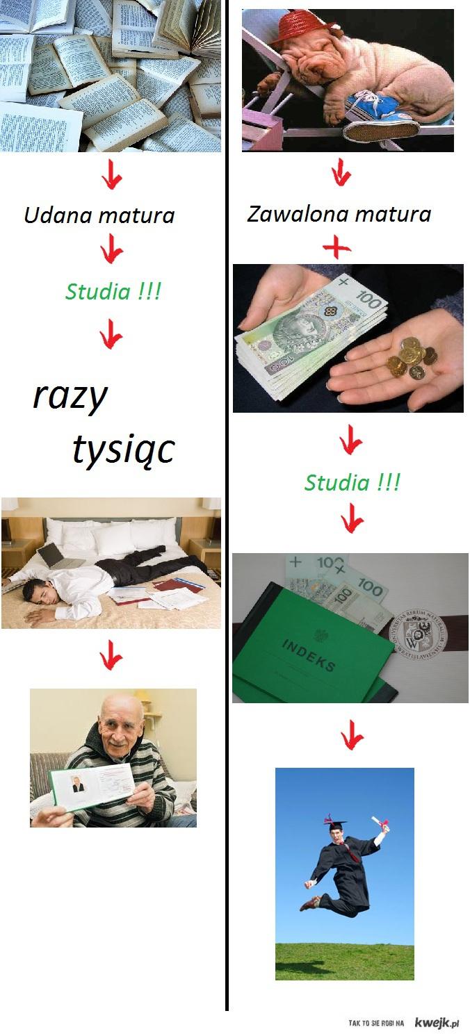 Idea studiów