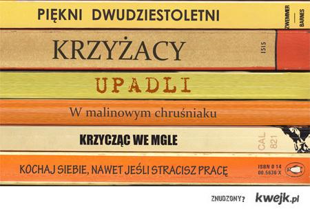 literatura pobudza wyobraznie v2