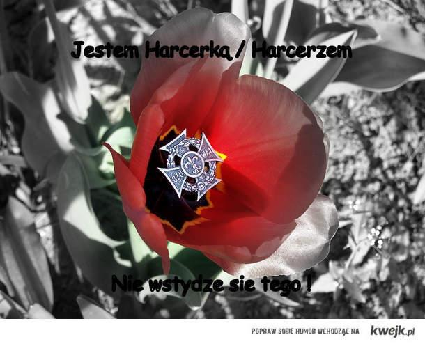 Harcerka Harcerz