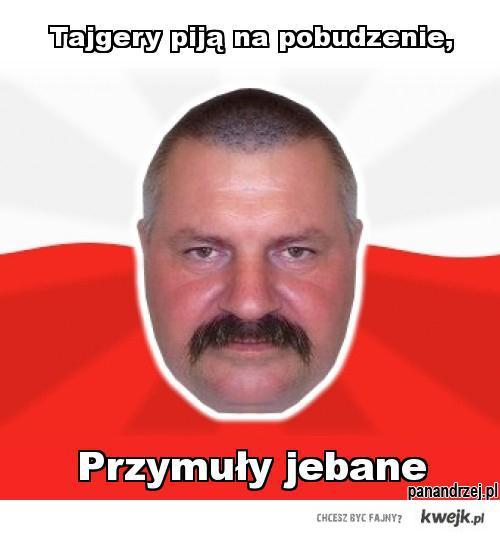 Tajgery