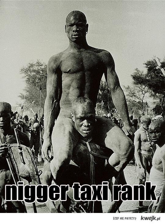 nigger taxi