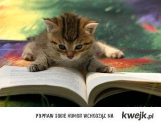 Czytać każdy może! :D