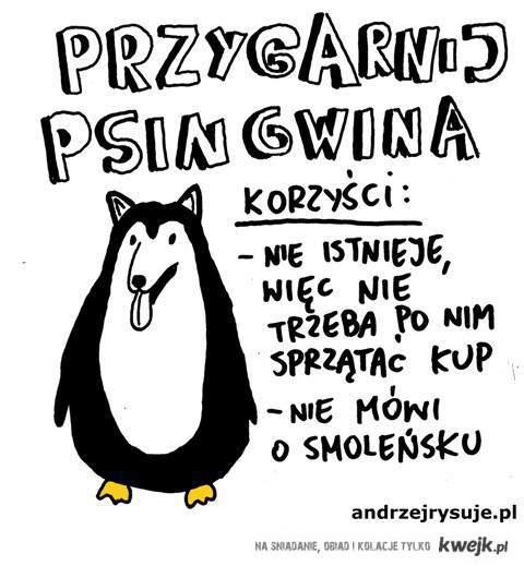 Psingwin