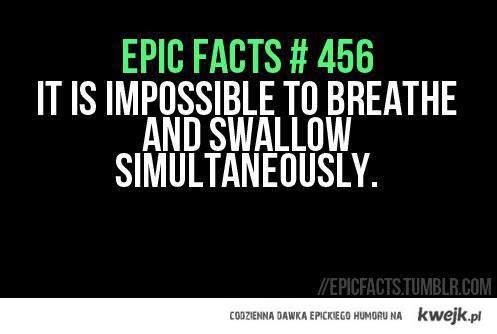epic 456