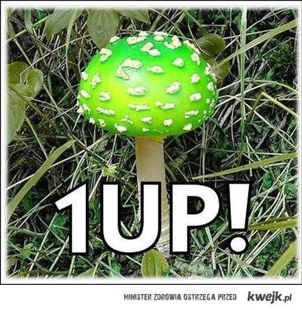 1 UP !!