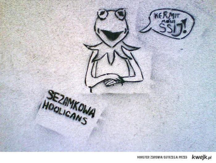 Kermit suko!
