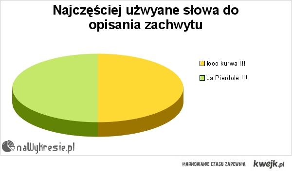 nawykresie.pl zobaczyłem