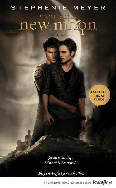 Twilight gay version