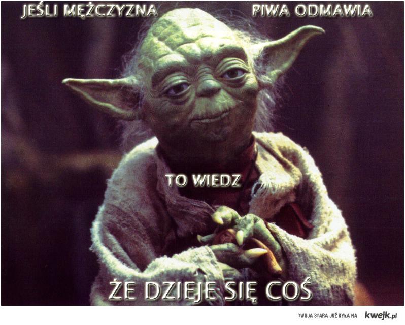 Yoda i piwo
