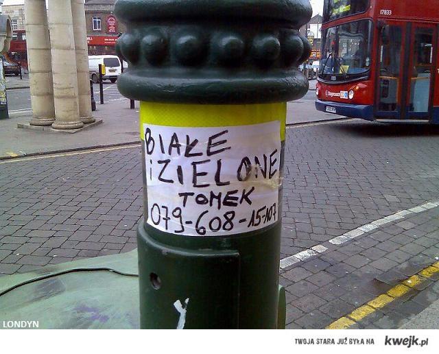 Białe i zielone Londyn