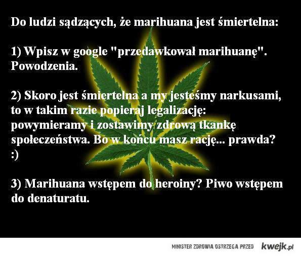 Ćpuny i narkusy?