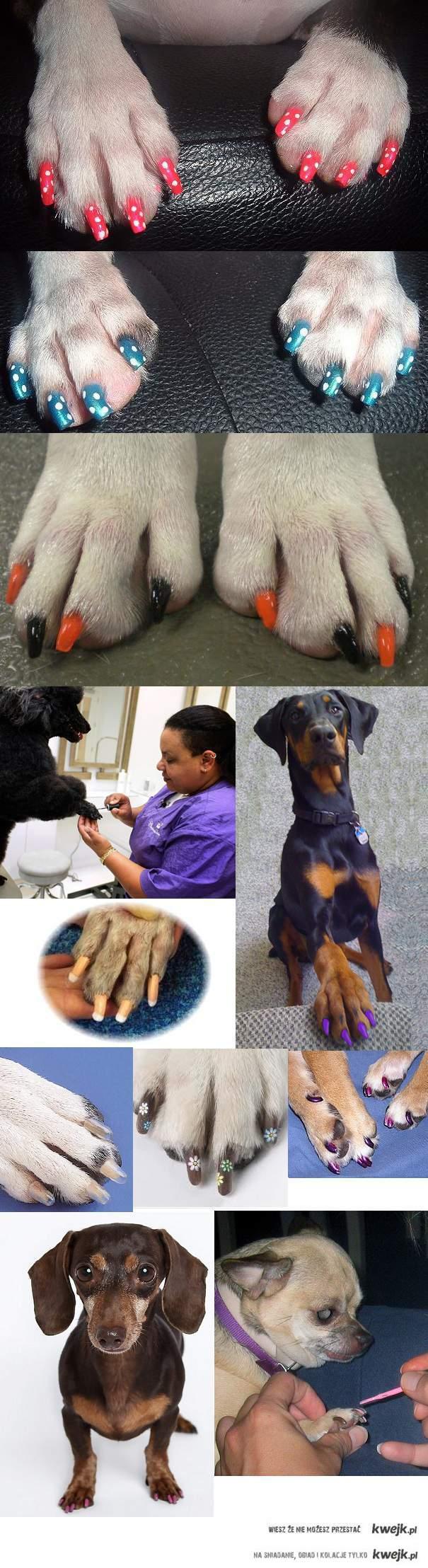 psi manikjur