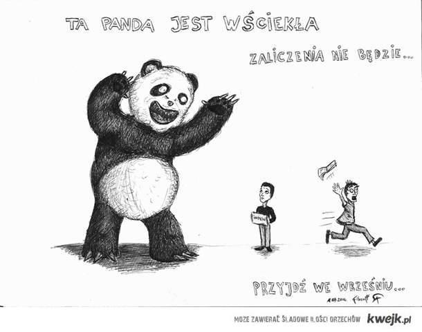 Złą panda