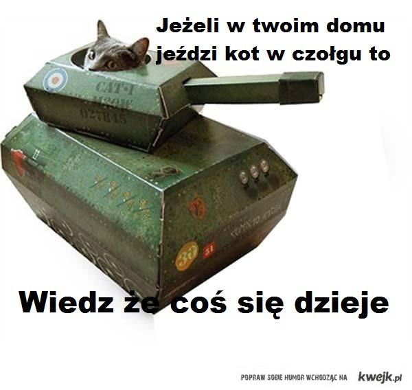 Kot w czołgu