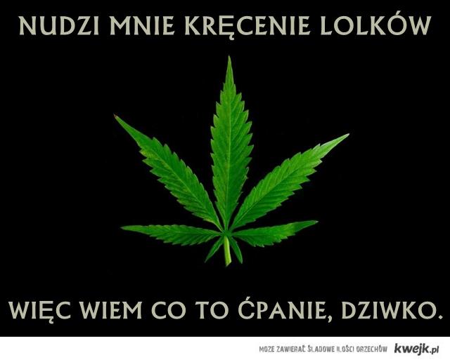 Dziwko.