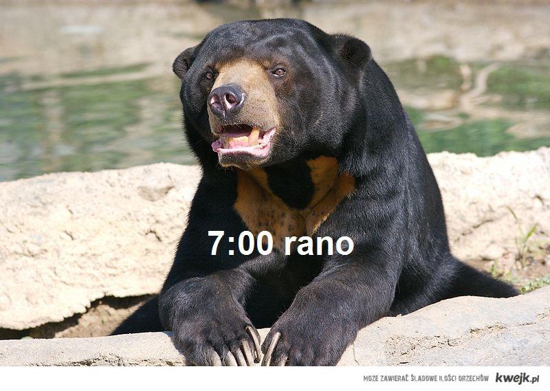 7 rano