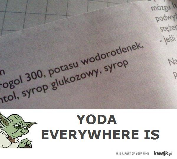 yoda everywhere is