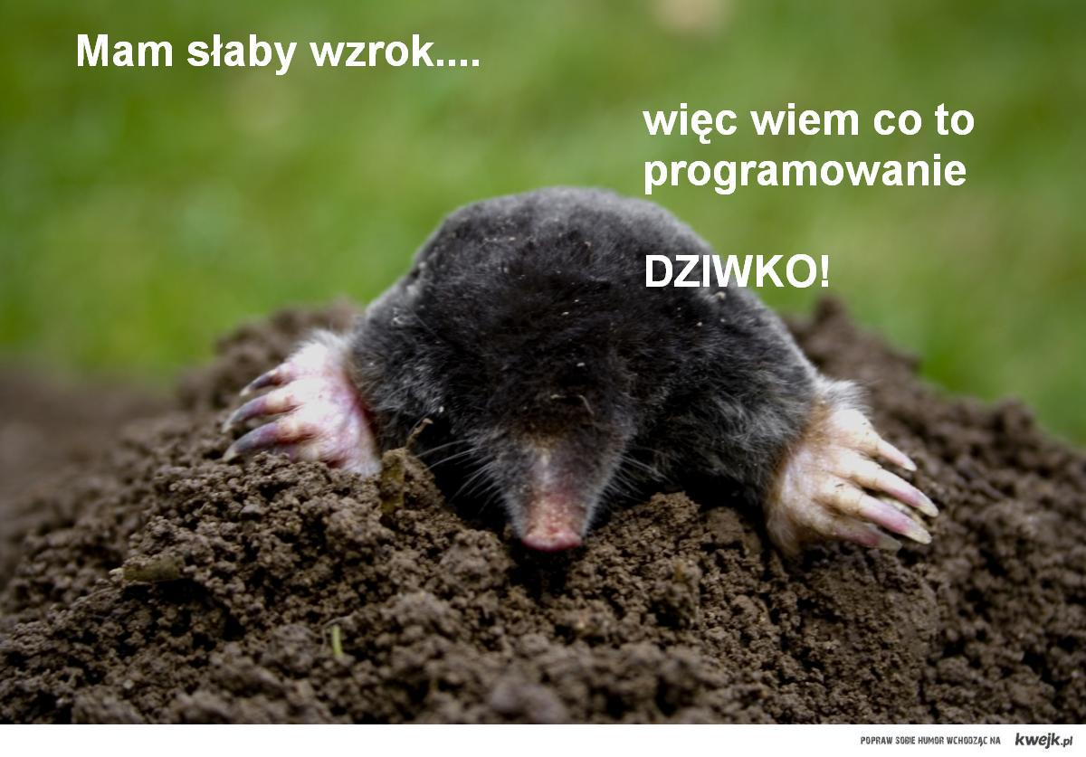 Dylematy Programisty.