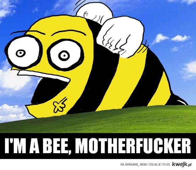 im bee, motherfucker