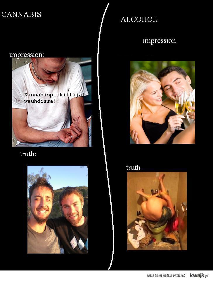 Trawa vs Alkohol