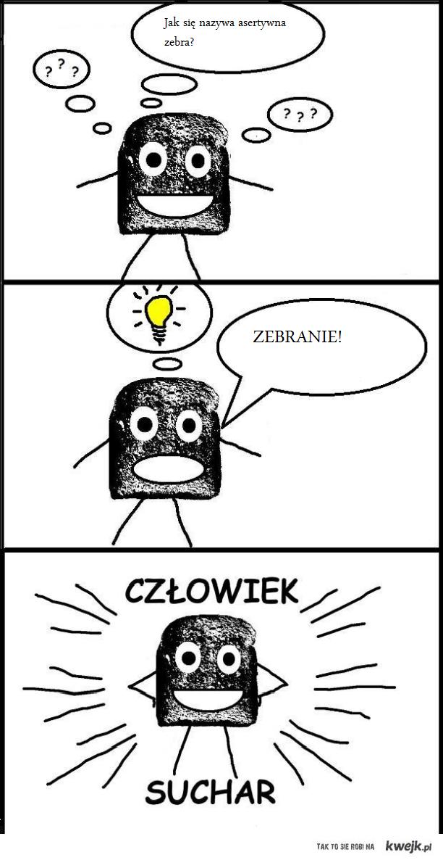 Człowiek Suchar- zebra