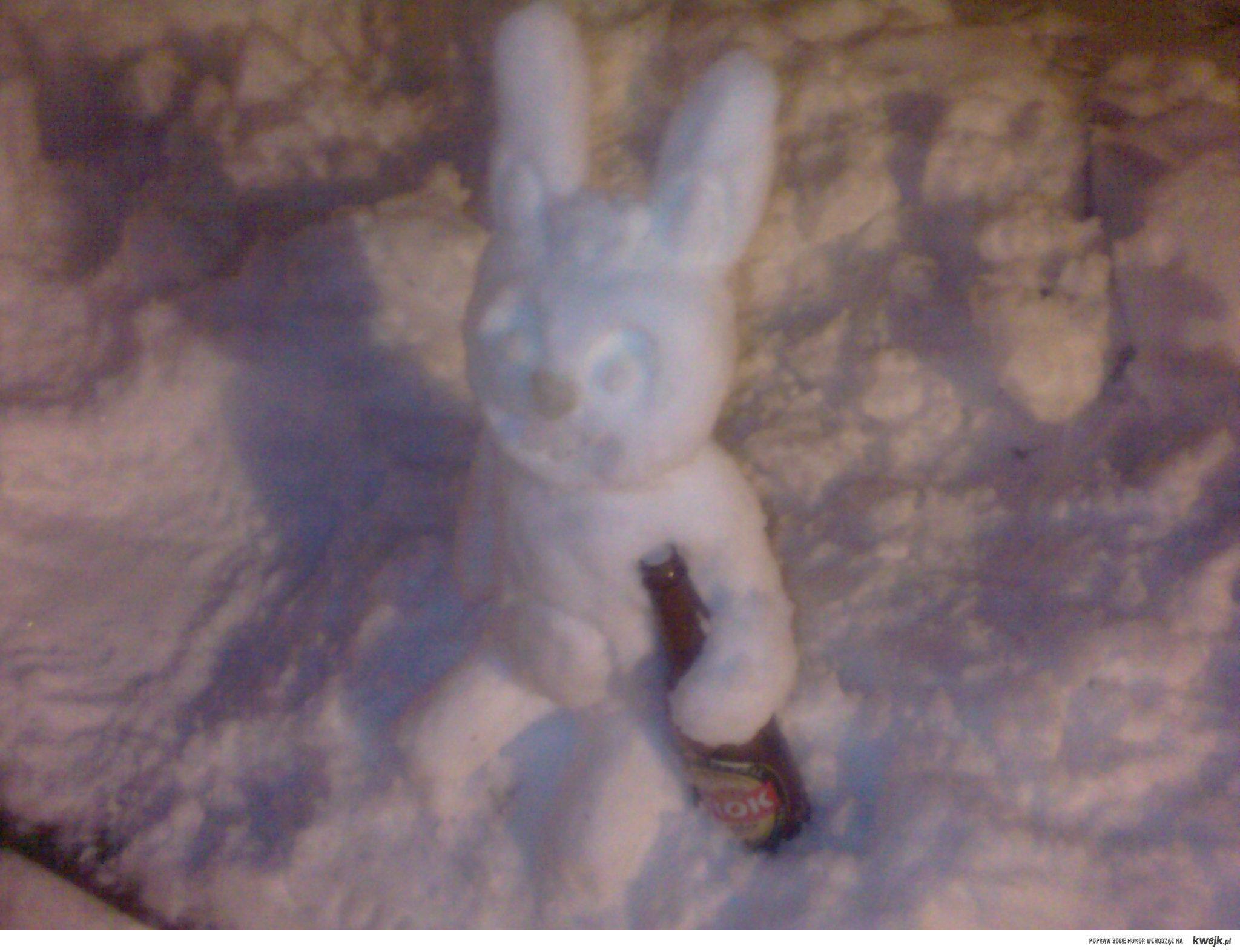 Sniegowy Cuddles