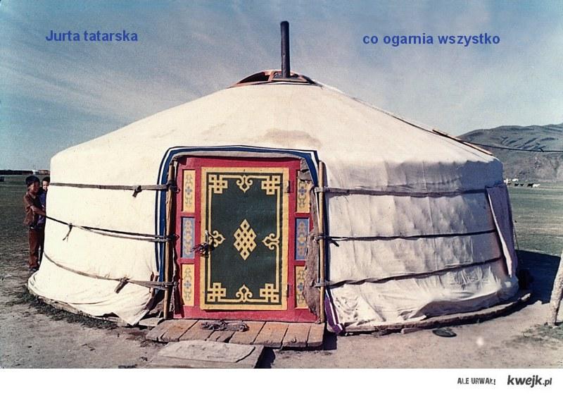 4 mongolians