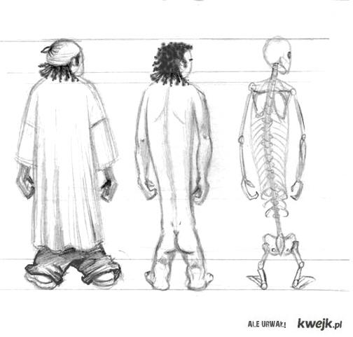 Nigger Anatomy