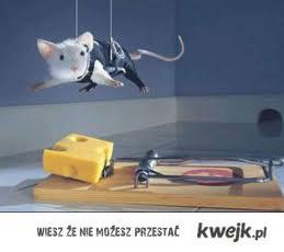 myszynimmposible