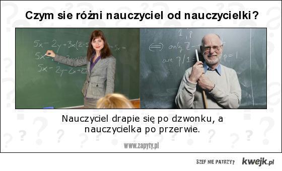 nauczyciel, a nauczycielka