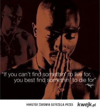Jeśli nie możesz znaleźć celu życia, znajdź coś w imię czego mogłbyś umrzeć.