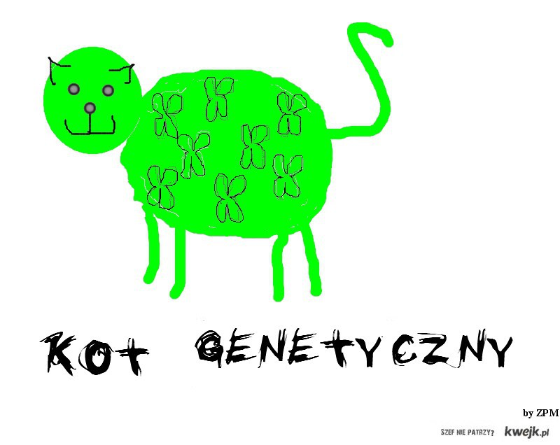 kot genetyczny