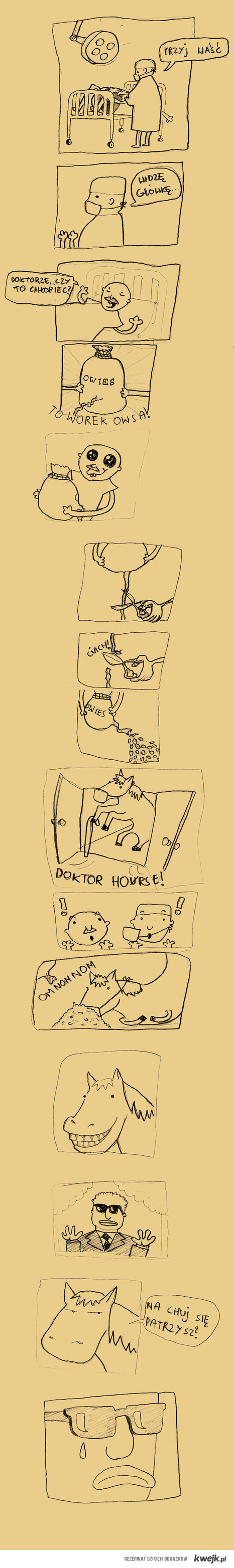 DR.Horse