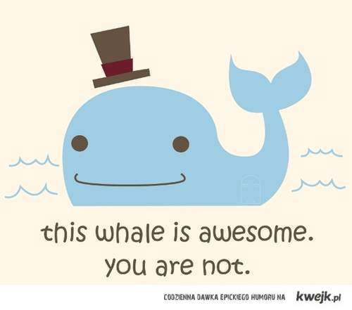 Awesome whale.