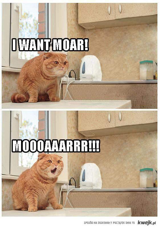 MOAR!