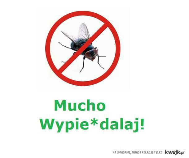 Mucho Wypie*dalaj!