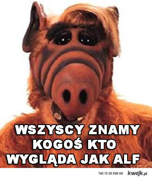 Wszyscy znamy kogoś kto wygląda jak Alf