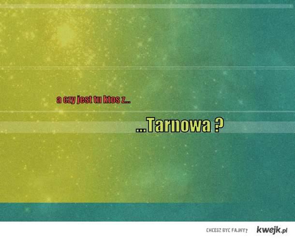 tarnow gg
