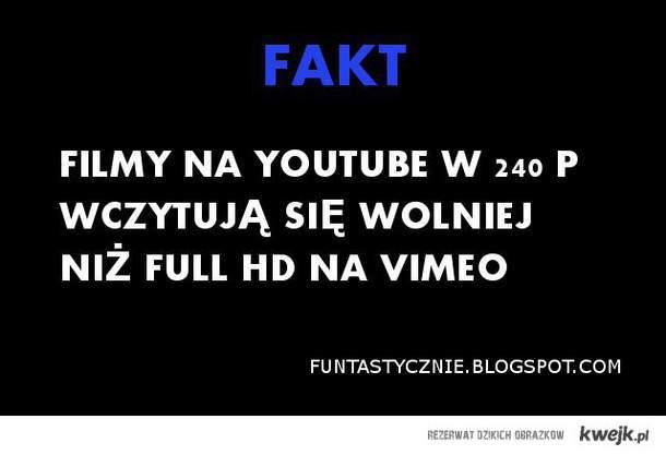 INTERNETOWY FAKT
