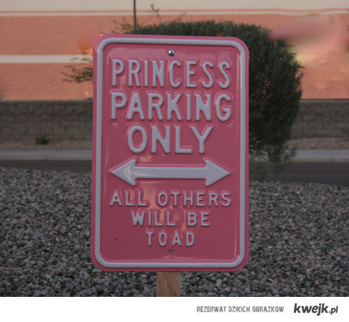 parking for princess