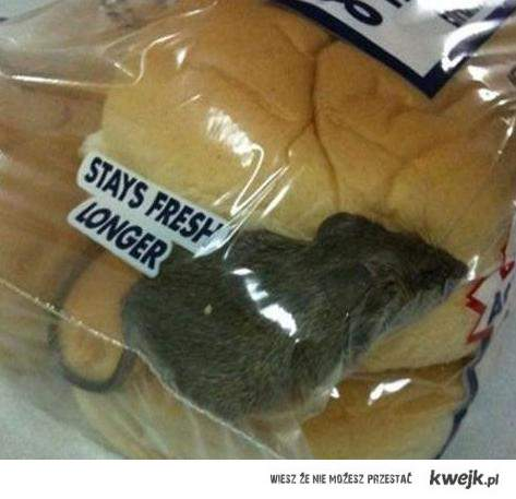Mysz gratis do bułeczek :) smacznego:)