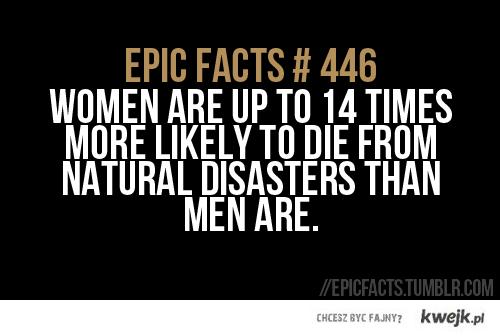 epic fact 446