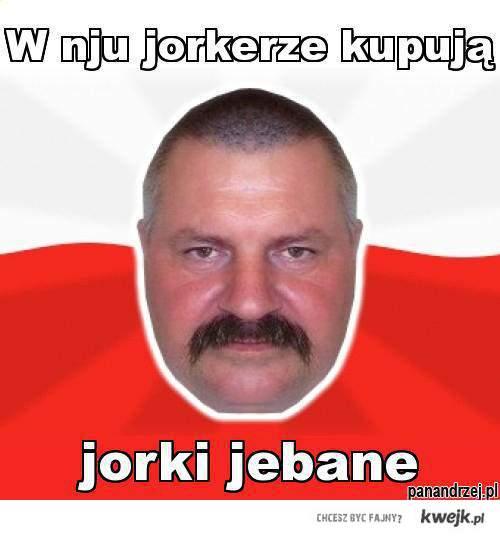 NIU JORKER