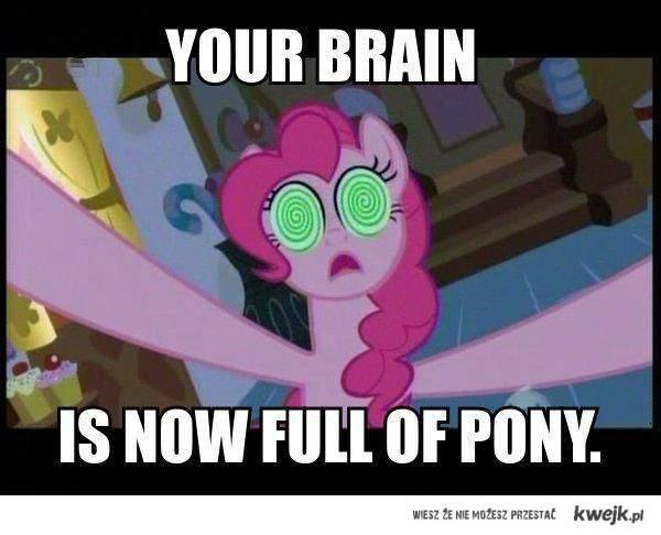 full of pony