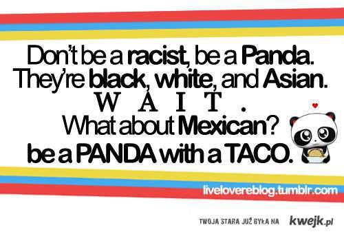 panda with taco