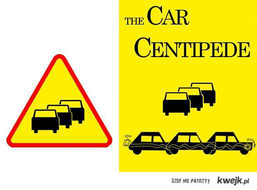 car centipede