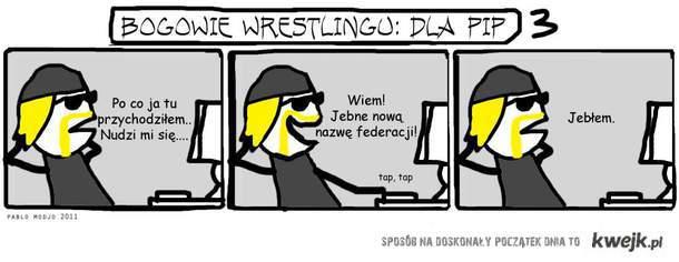 Bogowie Wrestlingu - Dla Pip - nowa nazwa TNA