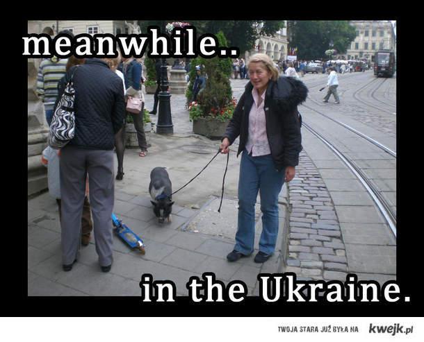 meanwhile in the ukraine (rynek lwowski)