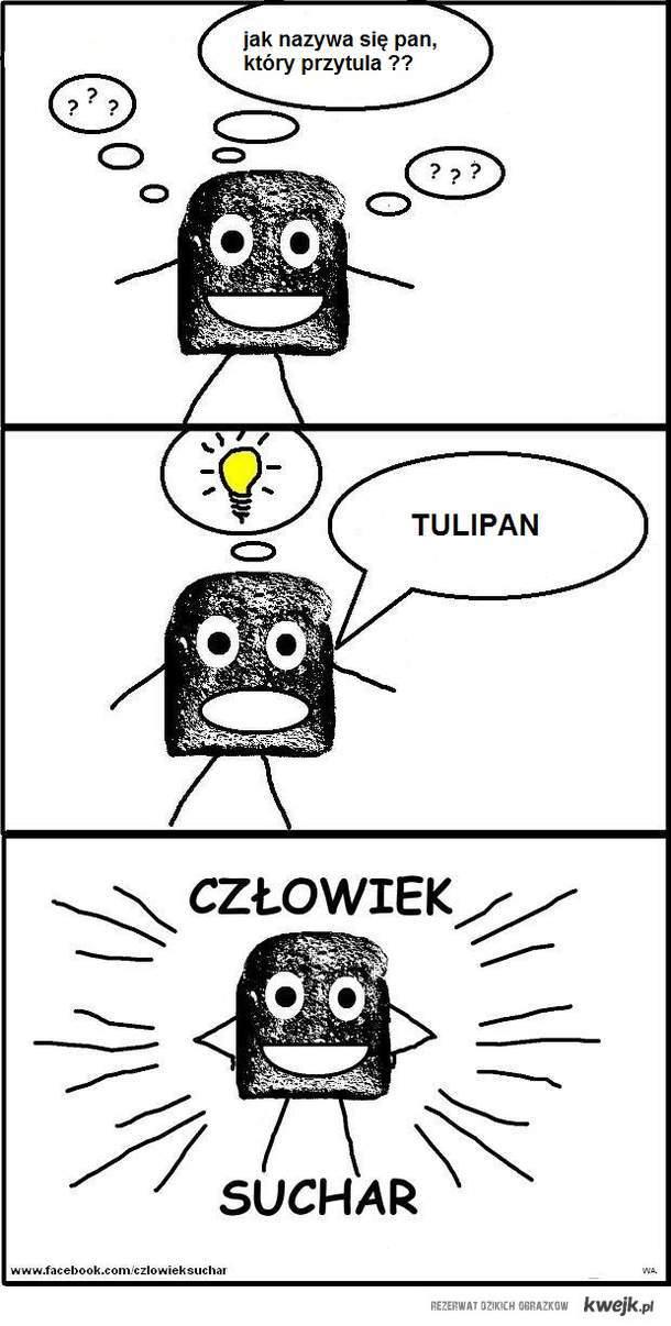 CZŁOWIEK SUCHAR .